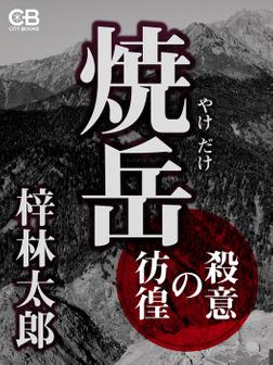 焼岳 殺意の彷徨-電子書籍