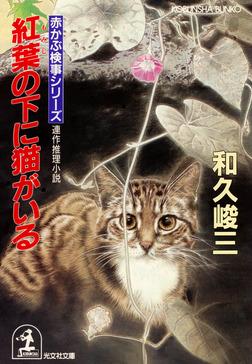紅葉の下に猫がいる-電子書籍