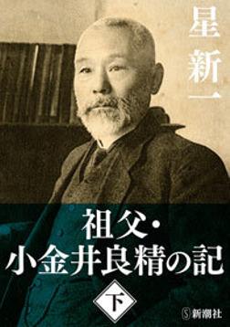 祖父・小金井良精の記(下)-電子書籍