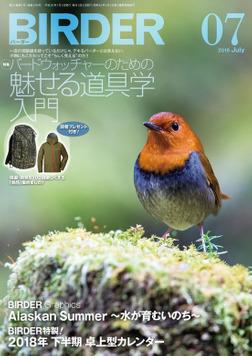 BIRDER2018年7月号-電子書籍