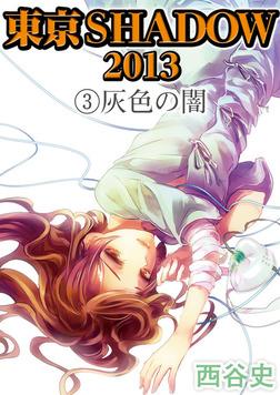 東京SHADOW 2013(3) 灰色の闇-電子書籍