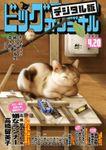 ビッグコミックオリジナル 2020年8号(2020年4月3日発売)