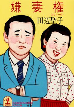 嫌妻権-電子書籍