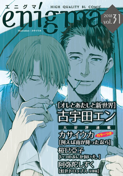 enigma vol.31 虹色ドロップス 京都篇、ほか-電子書籍