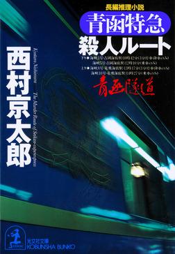 青函特急殺人ルート-電子書籍
