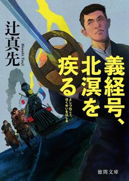 義経号、北溟を疾(はし)る-電子書籍