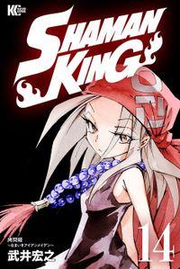 SHAMAN KING ~シャーマンキング~ KC完結版(14)