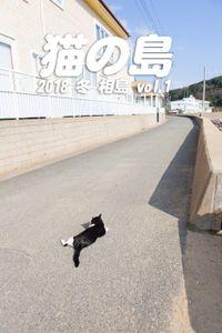猫の島 2018 冬 相島 vol.1