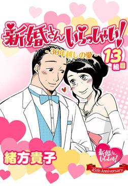 新婚さんいらっしゃい!30年越しの愛-電子書籍