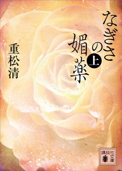 なぎさの媚薬(上)-電子書籍