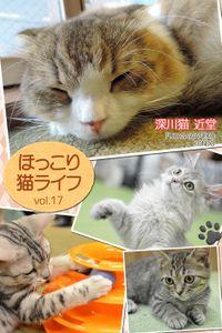ほっこり猫ライフ vol.17