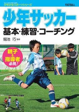 少年サッカー  基本・練習・コーチング-電子書籍