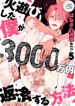 火遊びした僕が3000万円返済する方法 5巻-電子書籍