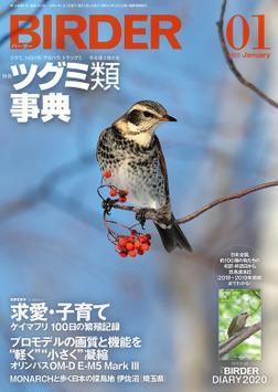 BIRDER2020年1月号-電子書籍