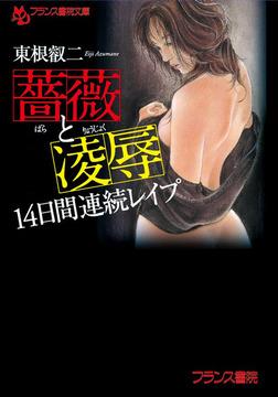 薔薇と凌辱 14日間連続レイプ-電子書籍