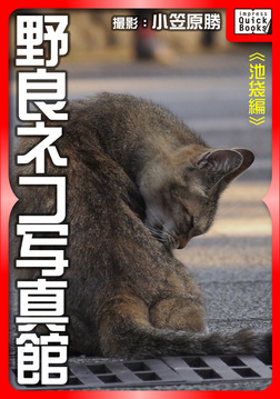 野良ネコ写真館【池袋編】-電子書籍