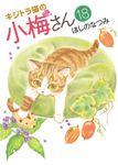 キジトラ猫の小梅さん / 18
