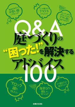 "Q&A庭づくりの""困った!""を解決するアドバイス100-電子書籍"