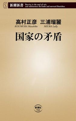 国家の矛盾-電子書籍