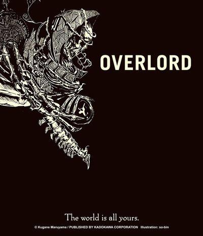 Overlord, Vol. 1: Bookshelf Skin [Bonus Item]