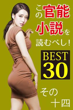 この官能小説を読むべし! BEST30 その十四-電子書籍