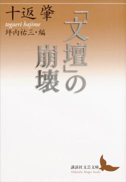 「文壇」の崩壊-電子書籍