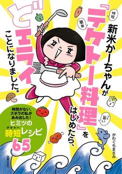新米かーちゃんが「テケトー料理」をはじめたら、どエライことになりました。-電子書籍