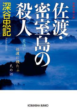 佐渡・密室島の殺人-電子書籍
