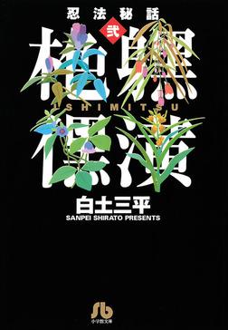 忍法秘話(2)-電子書籍