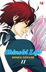 Shinobi Life, Volume 11