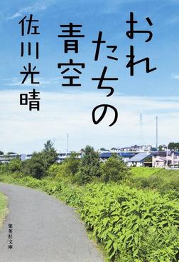 おれたちの青空(おれのおばさんシリーズ)-電子書籍