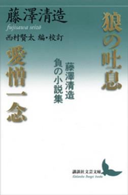 狼の吐息/愛憎一念 藤澤清造 負の小説集-電子書籍