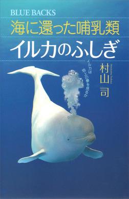 海に還った哺乳類 イルカのふしぎ イルカは地上の夢を見るか-電子書籍