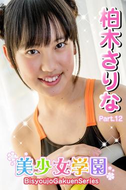 美少女学園 柏木さりな Part.12-電子書籍