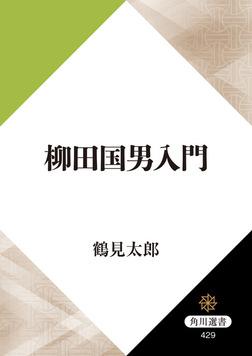 柳田国男入門-電子書籍