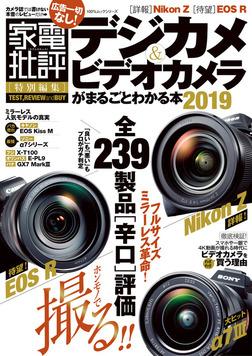 100%ムックシリーズ デジカメ&ビデオカメラがまるごとわかる本2019-電子書籍