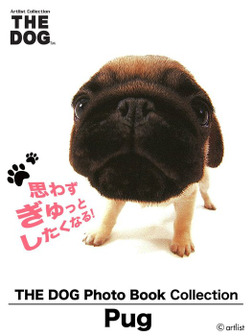 THE DOG Photo Book Collection Pug-電子書籍
