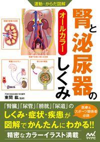 運動・からだ図解 腎と泌尿器のしくみ