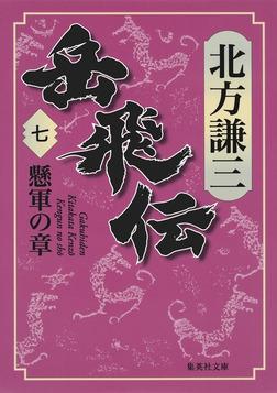 岳飛伝 七 懸軍の章-電子書籍
