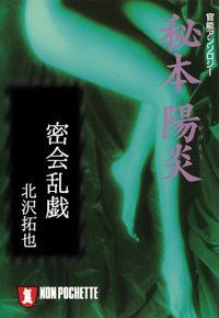 密会乱戯/秘本・陽炎