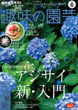 NHK 趣味の園芸 2021年6月号-電子書籍