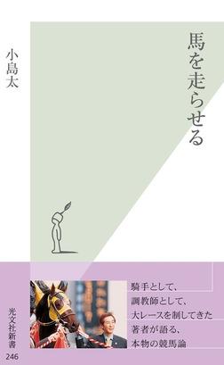 馬を走らせる-電子書籍