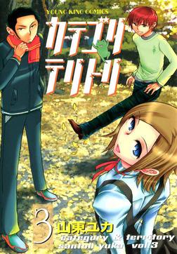 カテゴリ・テリトリ / 3-電子書籍