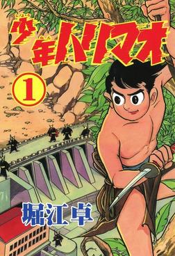 少年ハリマオ (1)-電子書籍