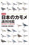 決定版 日本のカモメ識別図鑑