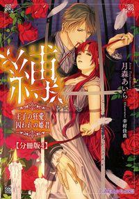 縛 王子の狂愛、囚われの姫君【分冊版4】【イラスト入り】