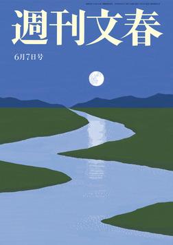 週刊文春 6月7日号-電子書籍