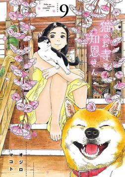 猫のお寺の知恩さん(9)-電子書籍