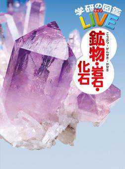 鉱物・岩石・化石-電子書籍