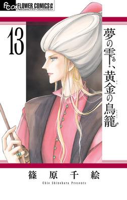 夢の雫、黄金の鳥籠(13)-電子書籍